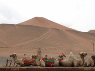 Authentic Silk Road Journey of a Lifetim...